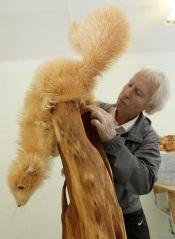 wood animals 18