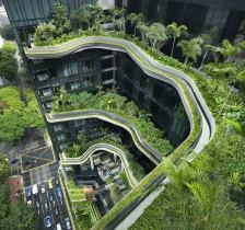 15 - oasis urbano
