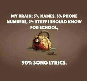 02 - brain