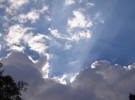 El cielo en la Alameda Central